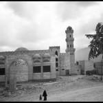 Socotra017